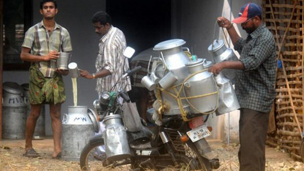 Indian-dairy