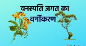 Classification of Plant Kingdom in hindi